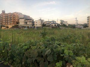 2020年8月 羽沢横浜国大駅開発状況